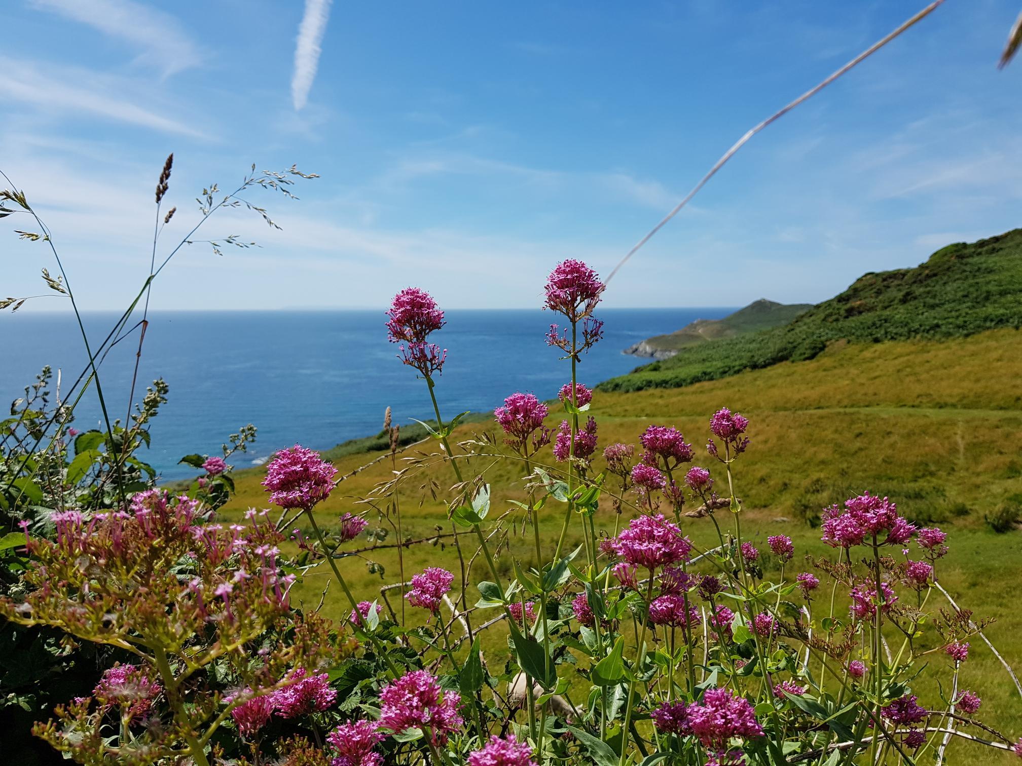 Morte Point, Mortehoe, North Devon